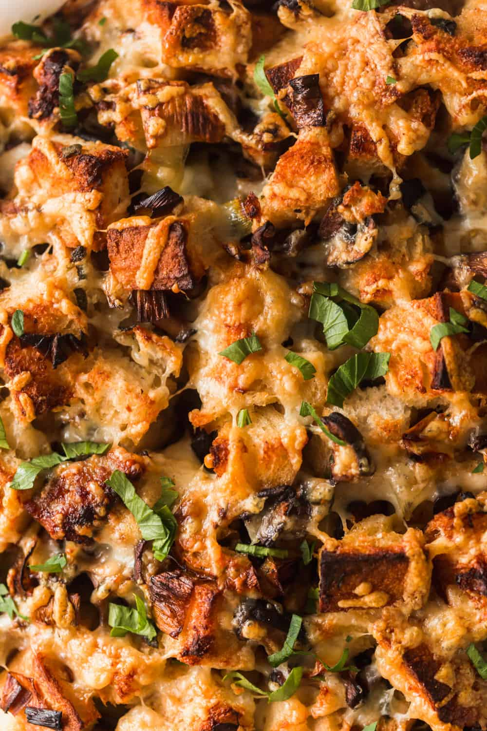 Close up of cooked stuffing with melted cheese and green herbs on top